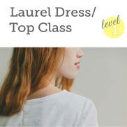 http://bobbinandink.com/classes/sewing/level1/laurel-dresstop-class/