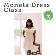 http://bobbinandink.com/classes/sewing/level3/moneta-stretch-knit-dress-class/